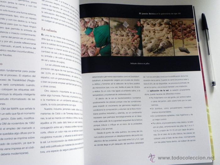Libros de segunda mano: EL JAMÓN IBÉRICO EN LA GASTRONOMÍA DEL SIGLO XXI - LIBRO JAMONES COMIDA ESPAÑA RECETAS MANJAR CERDO - Foto 3 - 54324252