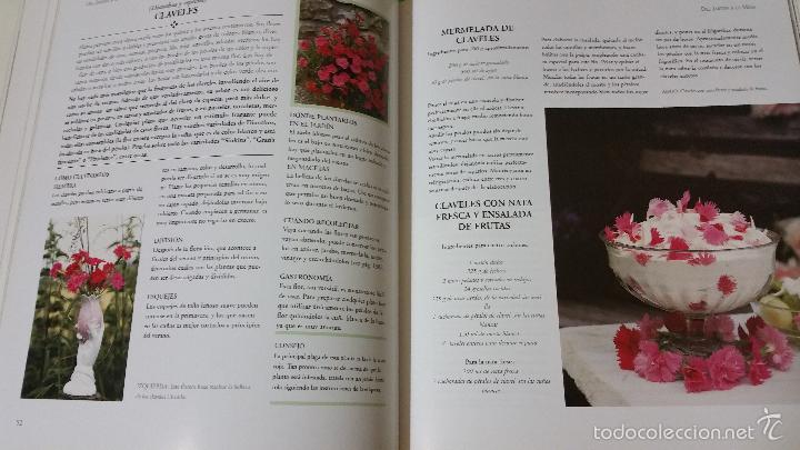 Del jard n a la mesa cultivo y recetas de flor comprar for Cocina wok segunda mano
