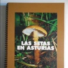 Libros de segunda mano: LAS SETAS EN ASTURIAS. CAJA DE AHORROS DE ASTURIAS, 1997. RUSTICA. FOTOGRAFIAS EN COLOR. 194 PAGINAS. Lote 73079559