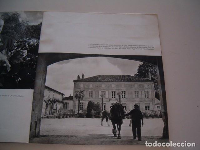Libros de segunda mano: LOUISE DE VILMORIN. Cognac. RM79061. - Foto 2 - 77225513