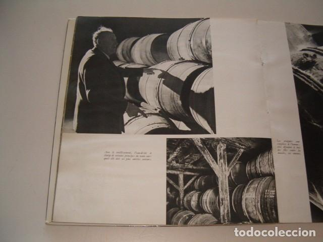 Libros de segunda mano: LOUISE DE VILMORIN. Cognac. RM79061. - Foto 3 - 77225513