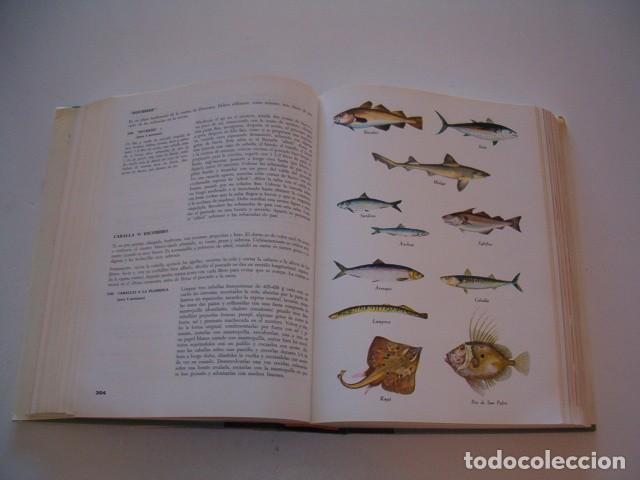 Libros de segunda mano: LUIGI CARNACINA. Enciclopedia de la Cocina. RM79637. - Foto 3 - 81750308