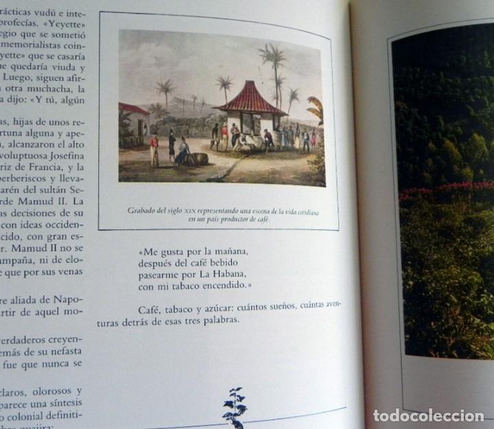 Libros de segunda mano: EL LIBRO DEL CAFÉ - PRECIOSO - NÉSTOR LUJÁN - HISTORIA ALIMENTO GASTRONOMÍA ESPAÑA EUROPA UTENSILIOS - Foto 7 - 127566635