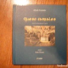 Libros de segunda mano: LIBRO QUESO DE CABRALES ED TRABE. Lote 138892854