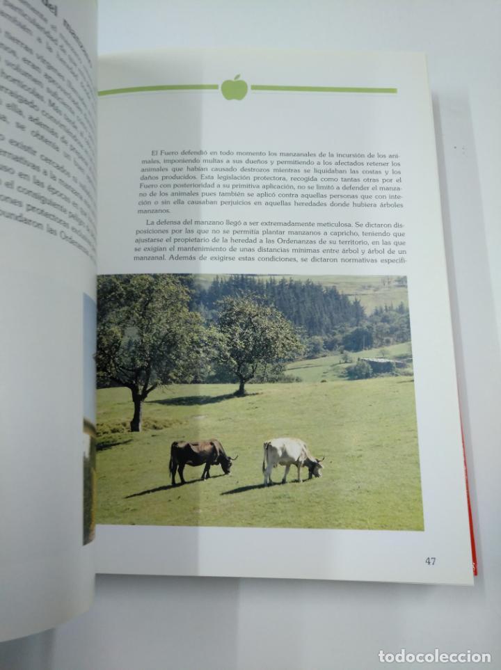Libros de segunda mano: LA SIDRA. JOSE URIA IRASTORZA. SENDOA ARGITALDARIA. 1987 ESTUDIO INFORME TXAOKOLI. 2 TOMOS. TDK338 - Foto 2 - 139441962