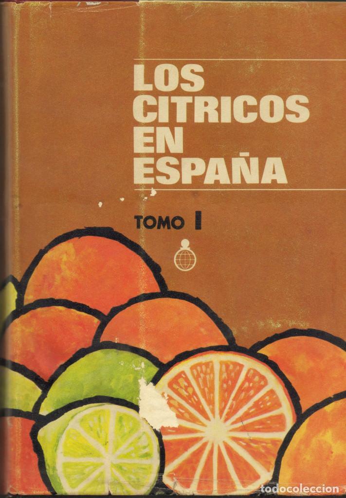 LOS CITRICOS EN ESPAÑA, 2 VOLS. GRANELL PASCUAL, JOSÉ (Y OTROS). CECA.MD., 1974. (Libros de Segunda Mano - Cocina y Gastronomía)