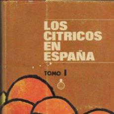 Libros de segunda mano: LOS CITRICOS EN ESPAÑA, 2 VOLS. GRANELL PASCUAL, JOSÉ (Y OTROS). CECA.MD., 1974.. Lote 142421522