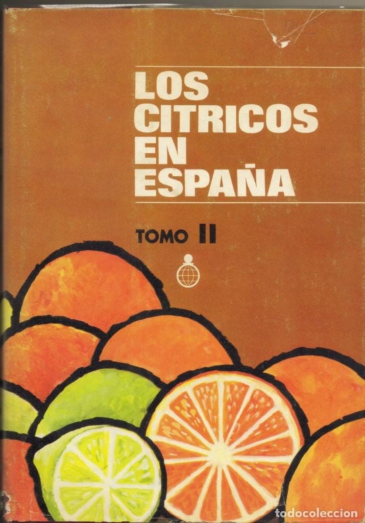 Libros de segunda mano: LOS CITRICOS EN ESPAÑA, 2 vols. Granell Pascual, José (y otros). CECA.Md., 1974. - Foto 2 - 142421522