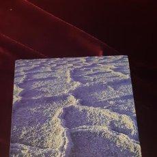 Libros de segunda mano: LA SAL. HISTÒRIA DE L'ÚNICA PEDRA CONSUMIBLE - MARK KURLANSKY - EDICIONS 62 2003. Lote 149496533