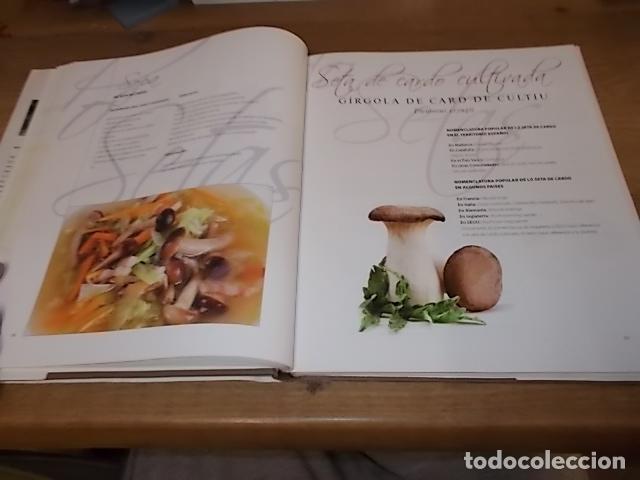 Libros de segunda mano: COCINANDO CON SETAS EN MALLORCA .TOMO II. ANTONI PINYA. DIARIO DE MALLORCA. 1ª EDICIÓN 2008. - Foto 17 - 164120614