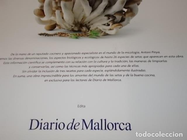 Libros de segunda mano: COCINANDO CON SETAS EN MALLORCA .TOMO II. ANTONI PINYA. DIARIO DE MALLORCA. 1ª EDICIÓN 2008. - Foto 24 - 164120614