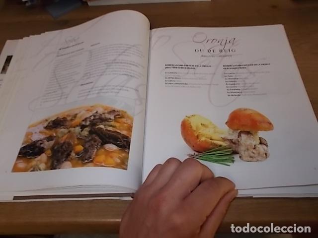 COCINANDO CON SETAS EN MALLORCA .TOMO II. ANTONI PINYA. DIARIO DE MALLORCA. 1ª EDICIÓN 2008. (Libros de Segunda Mano - Cocina y Gastronomía)