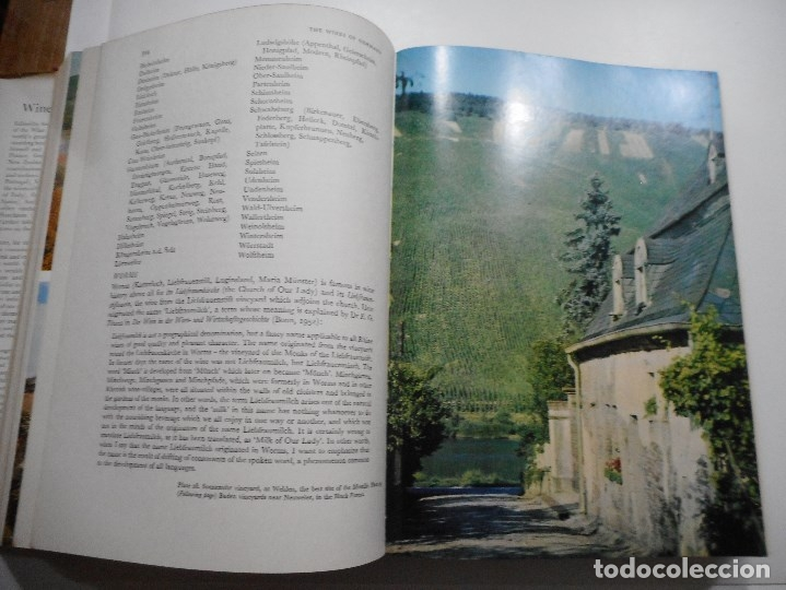 Libros de segunda mano: VV.AA Wines of the world (inglés) Y95524 - Foto 2 - 173174364