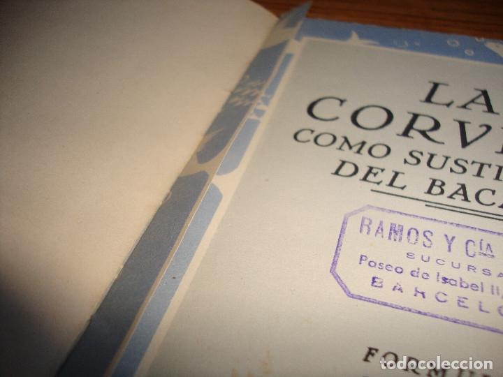 Libros de segunda mano: (ALB-TC-105) ANTIGUO LIBRO COCINA LA CORVINA PRODUCTO NACIONAL COMO SUSTITUTIVO DEL BACALAO - Foto 3 - 173827768