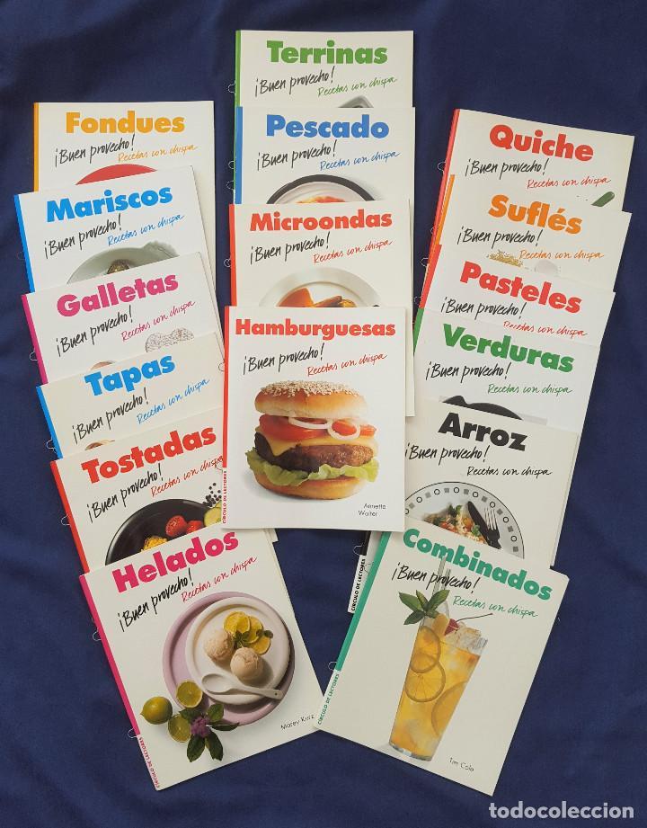 LOTE DE 16 LIBROS DE BUEN PROVECHO RECETAS CON CHISPA COLECCIÓN CÍCULO DE LECTORES 1989 (Libros de Segunda Mano - Cocina y Gastronomía)