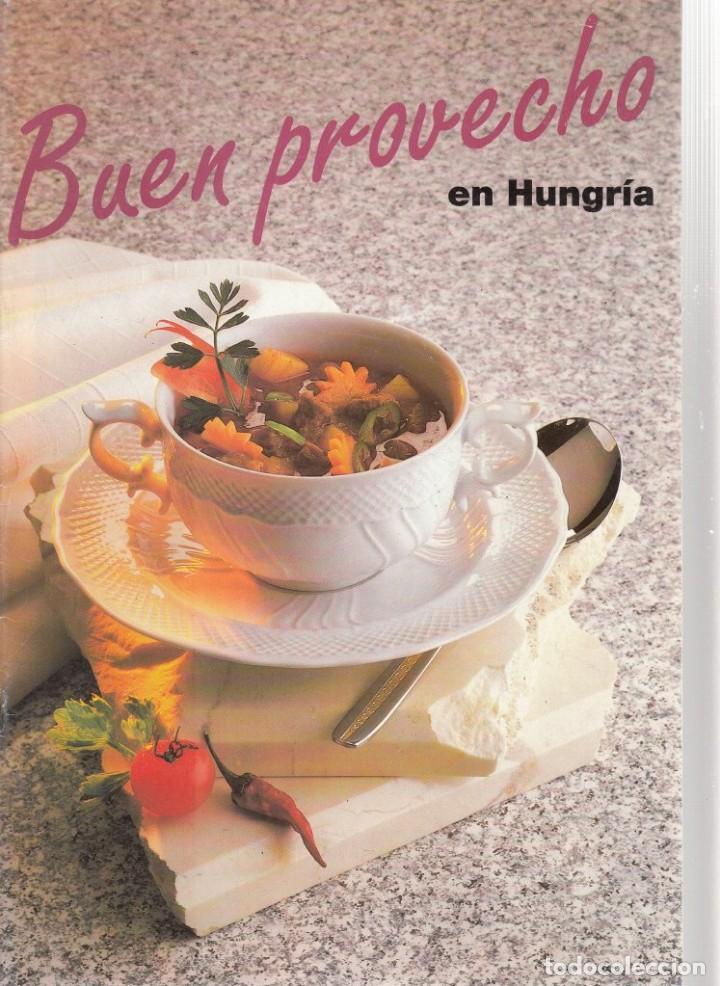 BUEN PROVECHO EN HUNGRÍA. (RECETAS HÚNGARAS). 28 PÁGINAS. OFICINA NACIONAL DE TURISMO DE HUNGRÍA. (Libros de Segunda Mano - Cocina y Gastronomía)