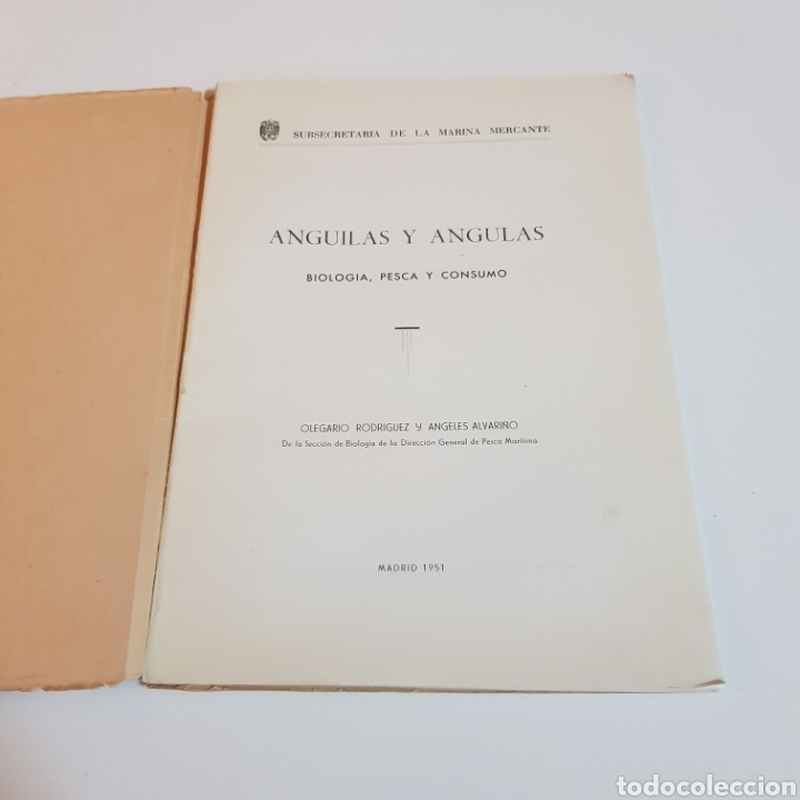 Libros de segunda mano: ANGULAS Y ANGUILAS ( BIOLOGIA PESCA Y CONSUMO ) OLEGARIO RODRIGUEZ Y ANGELES ALVARIÑO 1951 - Foto 2 - 207530457