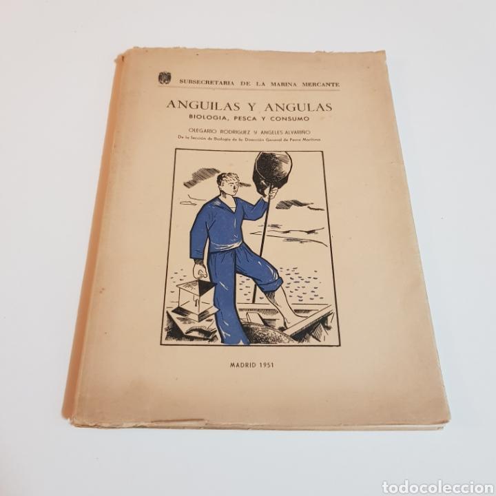 Libros de segunda mano: ANGULAS Y ANGUILAS ( BIOLOGIA PESCA Y CONSUMO ) OLEGARIO RODRIGUEZ Y ANGELES ALVARIÑO 1951 - Foto 9 - 207530457