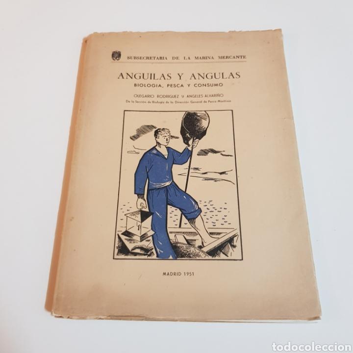 ANGULAS Y ANGUILAS ( BIOLOGIA PESCA Y CONSUMO ) OLEGARIO RODRIGUEZ Y ANGELES ALVARIÑO 1951 (Libros de Segunda Mano - Cocina y Gastronomía)
