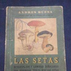Libros de segunda mano: LAS SETAS - ANDRES BUESA - 2ª EDICION 1955 - 42 PAGINAS + 24 LAMINAS A COLOR - 17X12,5CM. Lote 246287780