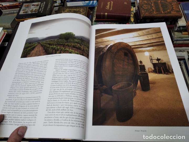 Libros de segunda mano: ELS VINS DE MALLORCA . PASSAT I PRESENT DUNA TRADICIÓ SECULAR . OLAÑETA . INCLOU ESTOIG . - Foto 6 - 212427716