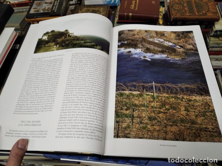 Libros de segunda mano: ELS VINS DE MALLORCA . PASSAT I PRESENT DUNA TRADICIÓ SECULAR . OLAÑETA . INCLOU ESTOIG . - Foto 7 - 212427716