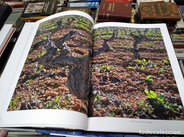 Libros de segunda mano: ELS VINS DE MALLORCA . PASSAT I PRESENT DUNA TRADICIÓ SECULAR . OLAÑETA . INCLOU ESTOIG . - Foto 8 - 212427716