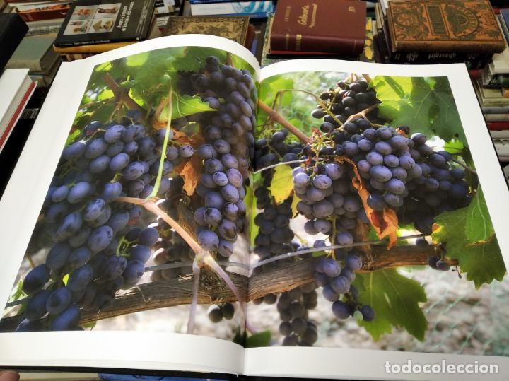 Libros de segunda mano: ELS VINS DE MALLORCA . PASSAT I PRESENT DUNA TRADICIÓ SECULAR . OLAÑETA . INCLOU ESTOIG . - Foto 10 - 212427716