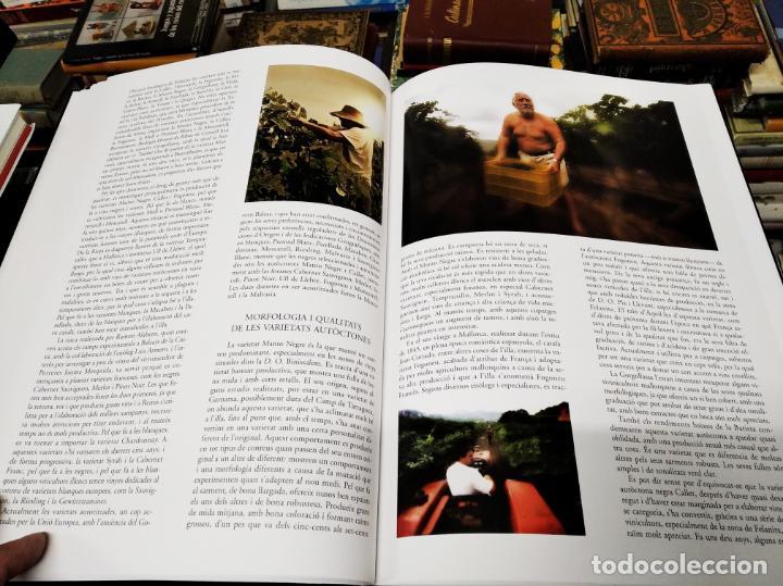 Libros de segunda mano: ELS VINS DE MALLORCA . PASSAT I PRESENT DUNA TRADICIÓ SECULAR . OLAÑETA . INCLOU ESTOIG . - Foto 11 - 212427716
