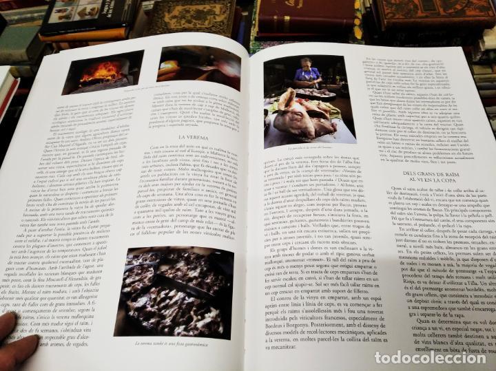 Libros de segunda mano: ELS VINS DE MALLORCA . PASSAT I PRESENT DUNA TRADICIÓ SECULAR . OLAÑETA . INCLOU ESTOIG . - Foto 12 - 212427716