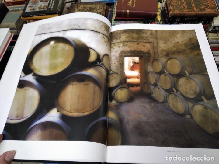 Libros de segunda mano: ELS VINS DE MALLORCA . PASSAT I PRESENT DUNA TRADICIÓ SECULAR . OLAÑETA . INCLOU ESTOIG . - Foto 14 - 212427716
