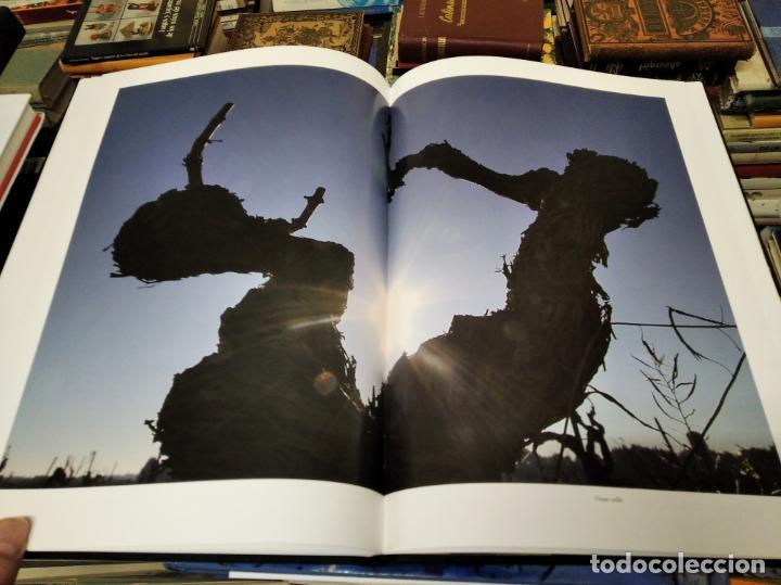 Libros de segunda mano: ELS VINS DE MALLORCA . PASSAT I PRESENT DUNA TRADICIÓ SECULAR . OLAÑETA . INCLOU ESTOIG . - Foto 18 - 212427716