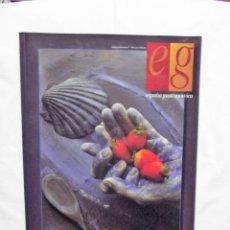 Libros de segunda mano: ESPAÑA GASTRONOMICA. Lote 219213968