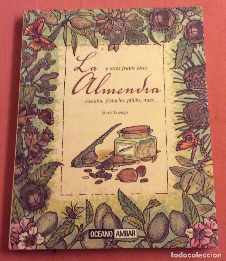 LA ALMENDRA Y OTROS FRUTOS SECOS. MARIA LUENGO. OCEANO AMBAR 2009 (Libros de Segunda Mano - Cocina y Gastronomía)