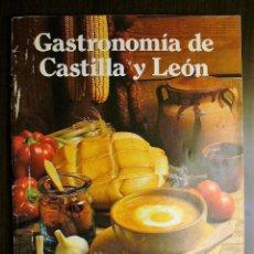Libros de segunda mano: GASTRONOMIA DE CASTILLA Y LEÓN. Lote 245977715