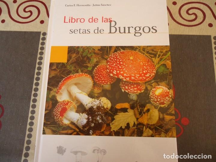 LIBRO DE LAS SETAS DE BURGOS (Libros de Segunda Mano - Cocina y Gastronomía)