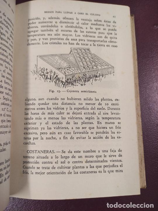 Libros de segunda mano: Horticultura y fruticultura - Rogelio Peña - 1942 395 páginas 18x13 187 figuras - Foto 4 - 263561395