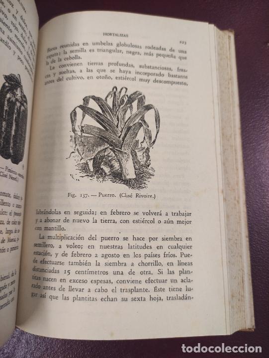 Libros de segunda mano: Horticultura y fruticultura - Rogelio Peña - 1942 395 páginas 18x13 187 figuras - Foto 5 - 263561395