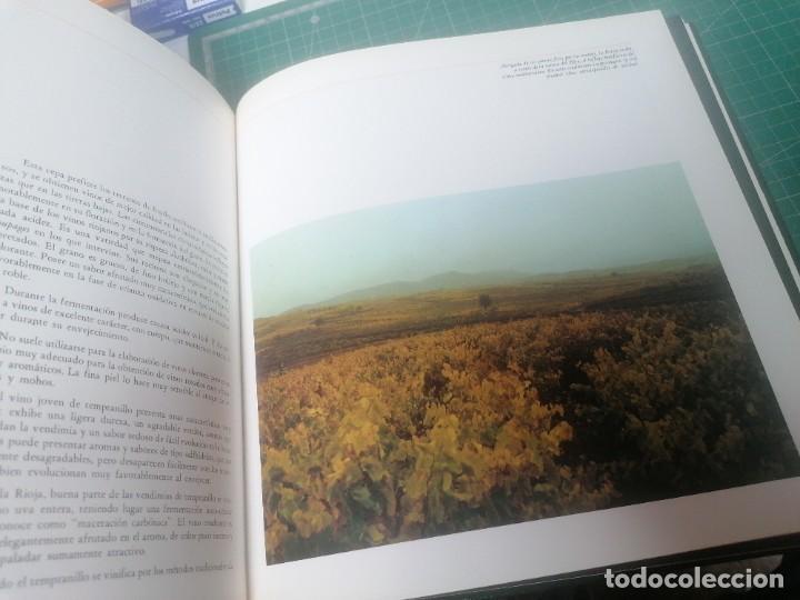 Libros de segunda mano: Los vinos de España. - Foto 3 - 265218529