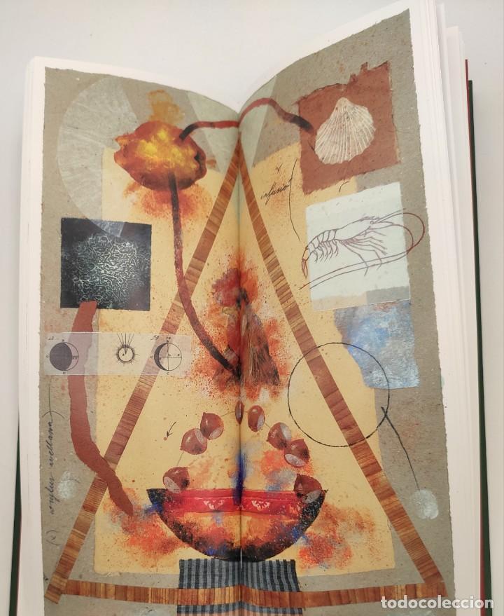Libros de segunda mano: Taula parada, De Nadal a Reis, de Caixa de Girona, 2004. Perspectiva Editorial Cultural, S.A. - Foto 10 - 269066258