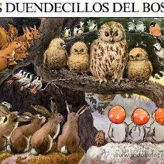 Libros de segunda mano: CUENTO LOS DUENDECILLOS DEL BOSQUE TEXTO E ILUSTRACIONES DE ELSA BESKOW. Lote 11315077