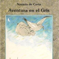 Libros de segunda mano: AVENTURA EN EL GRIS / NAZARIO DE CASIA ; ILUSTRACIÓN DE ALICIA CAÑAS CORTÁZAR. Lote 22730981