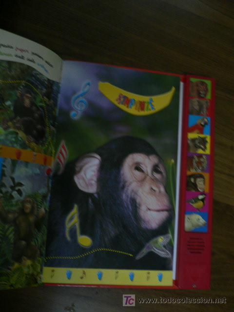 Libros de segunda mano: LIBRO CON SONIDOS ELS ANIMALS DE LA SELVA EN CATALÁN - Foto 2 - 26116878