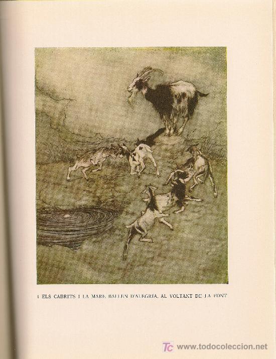 Libros de segunda mano: Rondalles de Grimm / Ilust. Arthur Rackham. Barcelona : Juventud, 1966. 25 x 19 cm. Tela Ed. 150 p. - Foto 4 - 27249352