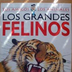 Libros de segunda mano: TUS AMIGOS LOS ANIMALES, LOS GRANDES FELINOS, GLOBUS 1994, ILUSTRACIONES SUSAETA.. Lote 27697764