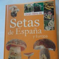 Libros de segunda mano: EL GRAN LIBRO DE LAS FIERAS. LOS MEJORES CUENTOS DE ANIMALES SALVAJES. EDITORIAL NOGUER, 1970 RM3466. Lote 36931213