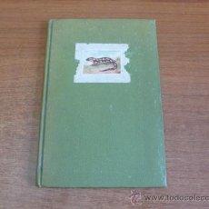 Libros de segunda mano: LAGARTIJAS, CUENTO DE SARA BOFILL. MECANOESCRITO, ILUSTRACIONES ORIGINALES Y DEDICADO. 1949.. Lote 37586761
