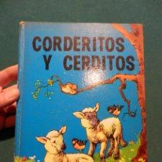 Libros de segunda mano: CORDERITOS Y CERDITOS - EDITORIAL MOLINO 1961 - COLECCIÓN PEQUEÑOS ANIMALES Nº 1 - TAPA DURA. Lote 53232293