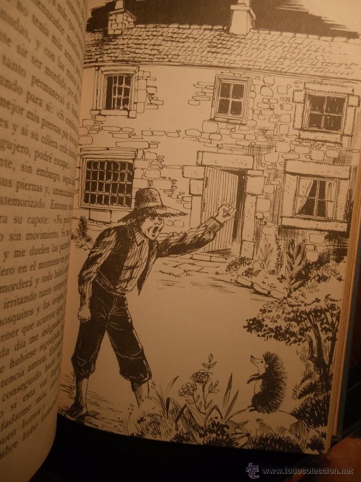 Libros de segunda mano: Cuentos para niños de Editorial Labor. Años 60. - Foto 6 - 29535686