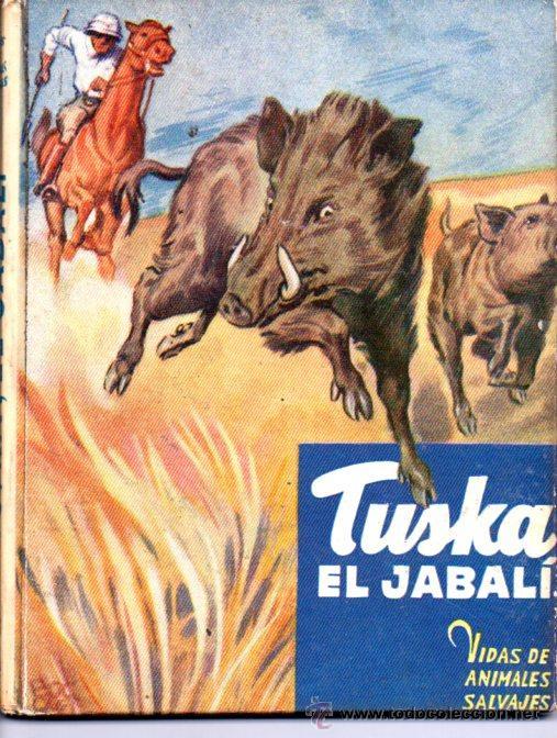 TUSKA EL JABALÍ (VIDAS DE ANIMALES SALVAJES MOLINO, C. 1950) (Libros de Segunda Mano - Literatura Infantil y Juvenil - Cuentos)